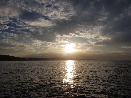 Cowichan Bay照片