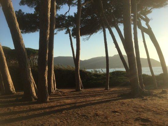 Populonia, Włochy: vom Strand nach hinten 2