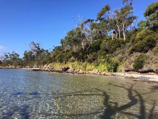 South Bruny National Park : Small beach on Luggaboine Circuit