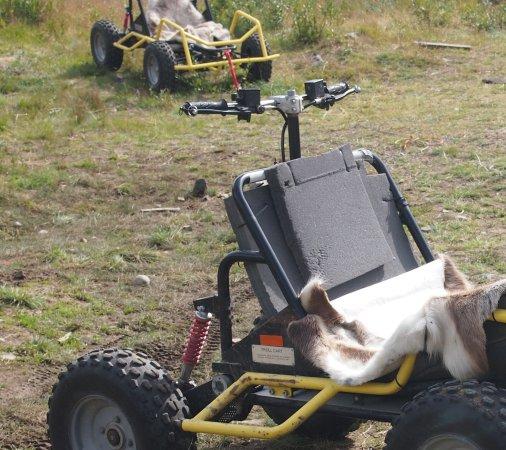 Øystre Slidre, Norge: The buggy
