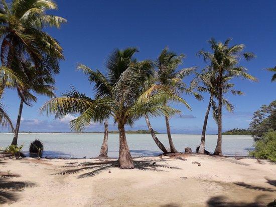 Rangiroa, Polynésie française : Visite de l'îles aux oiseaux et de ces paysages de cartes postales