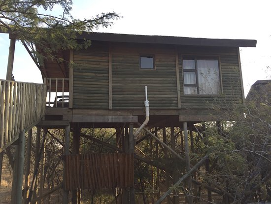 Pezulu Tree House Game Lodge: photo2.jpg