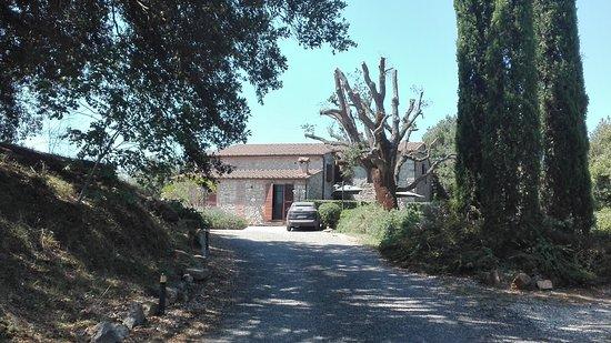 Roccastrada, Italien: IMG_20170806_122833_large.jpg