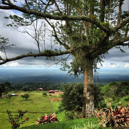 Siquirres, Costa Rica : Hermosa vista, beautiful view.