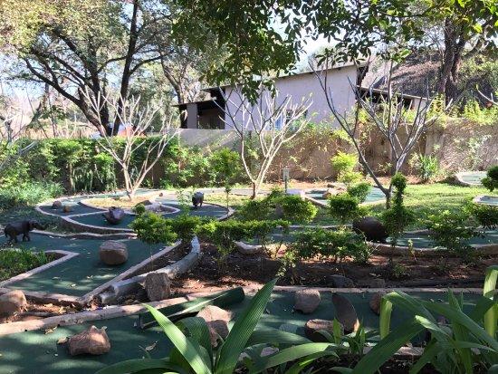 Sabie River Bush Lodge: photo4.jpg