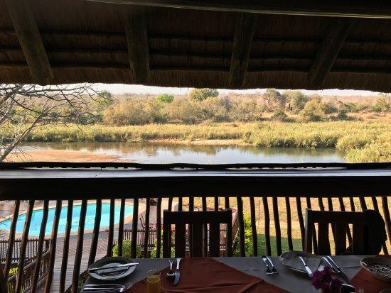Sabie River Bush Lodge: photo5.jpg