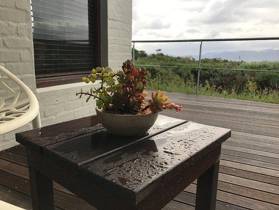 Grootbos Private Nature Reserve Resmi