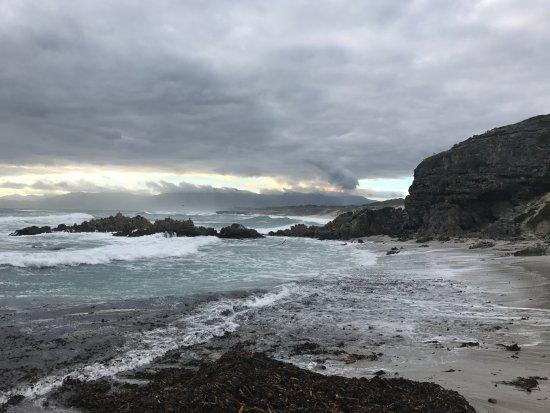 Grootbos Private Nature Reserve, Güney Afrika: coast