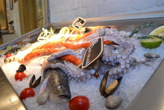 Bocconcino: Fish - Рыбная витрина