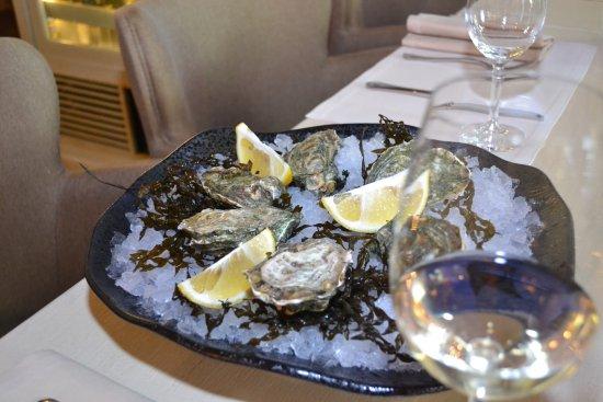 Bocconcino: Fresh oysters - Свежие устрицы