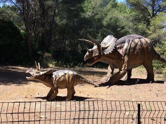 Musee - Parc des Dinosaures 이미지