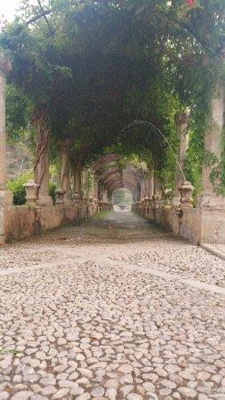 Jardins de Alfabia: Vue un peu en contre plongée de la treille avec des jets d'eau commandés par les visiteurs.