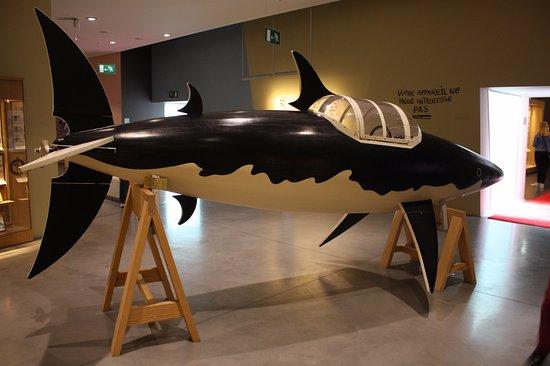 Musée Hergé : Op zoek naar de schat van Scharlaken Rackham