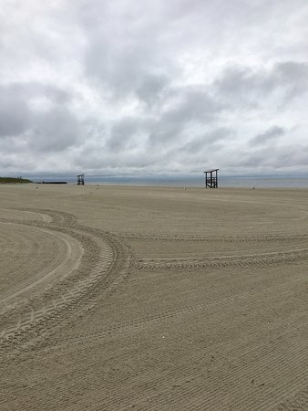 Seagull Beach: photo0.jpg