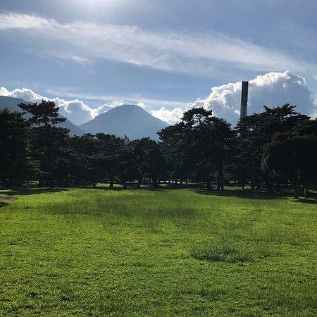 Beppu Park : 大きな芝生広場の西には、鶴見山