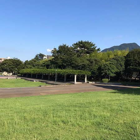 Beppu Park : 大きな藤棚と竹林 休憩スペースがそこそこに
