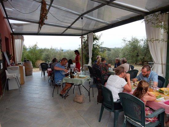 Tavarnelle Val di Pesa, Italy: Bio farm Aia delle Oche