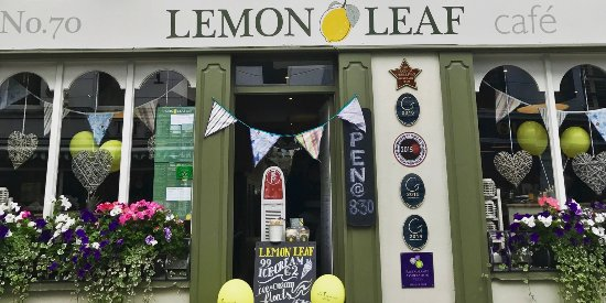 The Lemon Leaf Cafe Photo