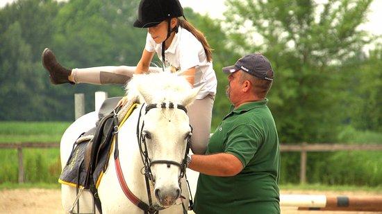 Meolo, Italie : horse riding near the hotel