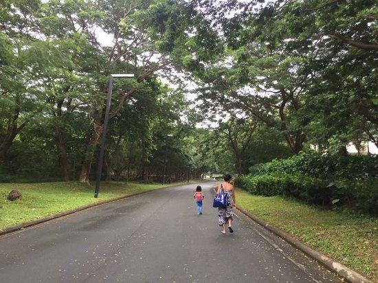 Nasugbu Photo