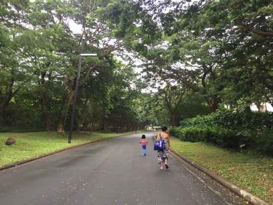 Foto Nasugbu