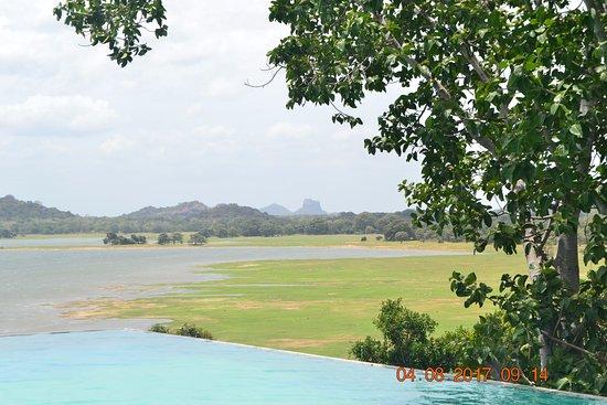 Heritance Kandalama: Sigiriya in the background, infinity in foreground