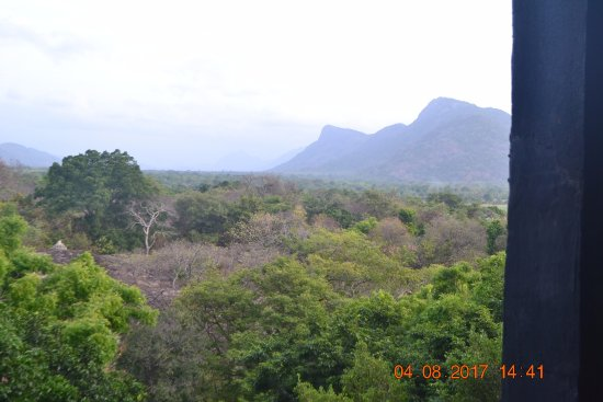 Heritance Kandalama: The better half of the view - see photo 2!