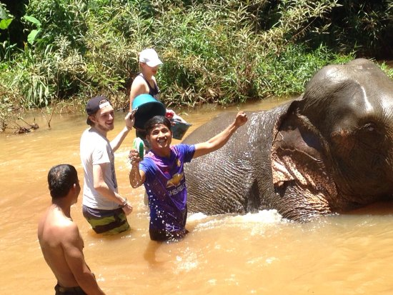Banlung, Cambodia: One day trip with washing elephants! Contact me for help.....