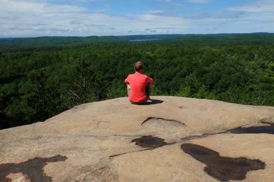 Algonquin Provincial Park, Canada: Weids uitzicht