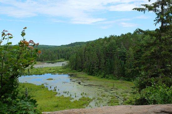 Algonquin Provincial Park, Canada: mooie uitzichten