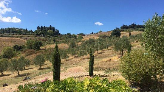 Casciana Terme, Italy: photo2.jpg