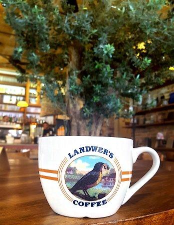 מסעדת קפה לנדוור נצרת עלית