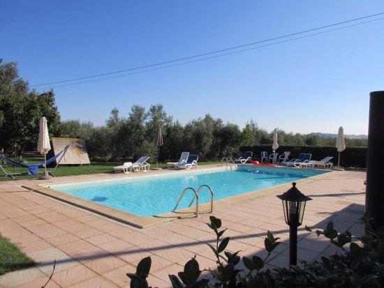 Agriturismo Al Vermigliano: La piscina