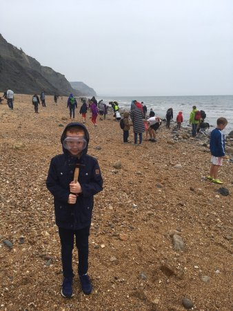 Charmouth Picture