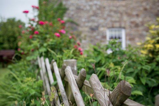 Newport -Trefdraeth, UK: lovely gardens!