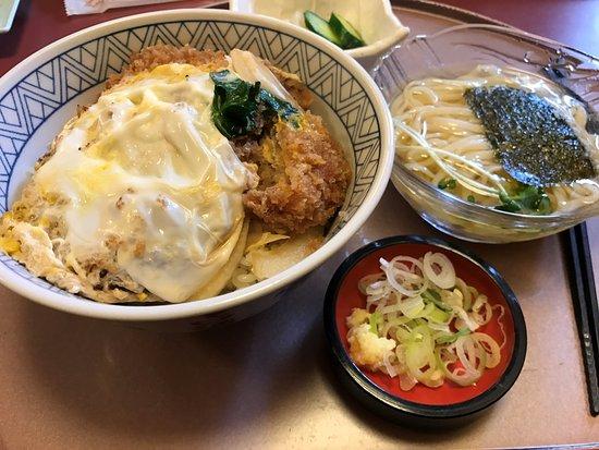 Tokai, Japón: かつ丼とコロうどん