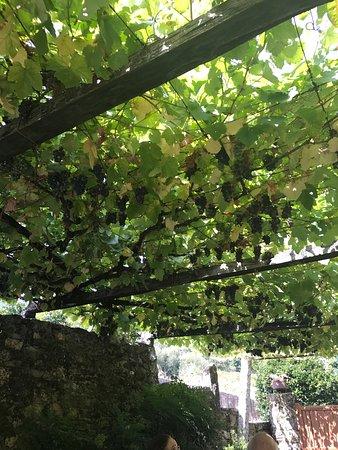 Vedra, Spain: photo6.jpg