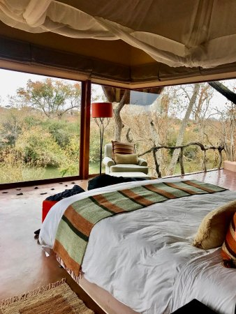 Madikwe Game Reserve, África do Sul: Room view