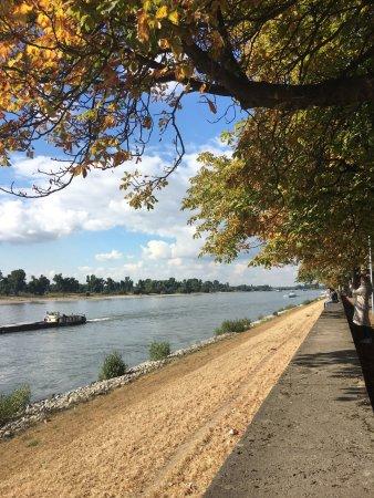 Rheinuferpromenade: Herbstliche Stimmung am Rheinufer