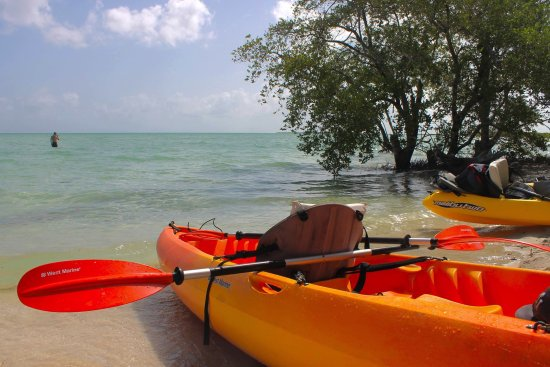 Sugarloaf Key, ฟลอริด้า: beach area for a swim