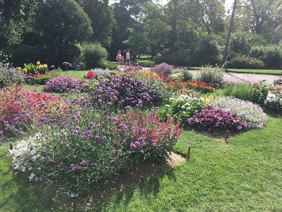 parterres de fleurs - Picture of Jardin du Grand Rond ...