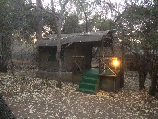 Marc's Treehouse Lodge: photo0.jpg