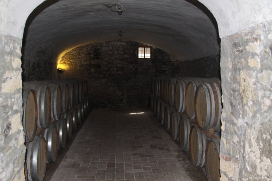 Gaiole in Chianti, Italia: de kelder
