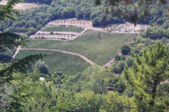 Gaiole in Chianti, Italia: uitzicht vanaf het kasteel