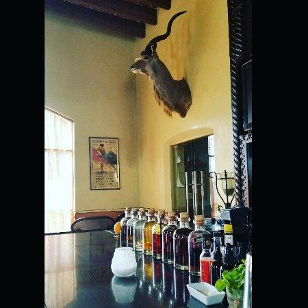 Todos Santos Inn: IMG_20170812_163811_866_large.jpg