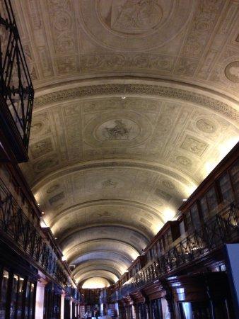 interno biblioteca reale di torino