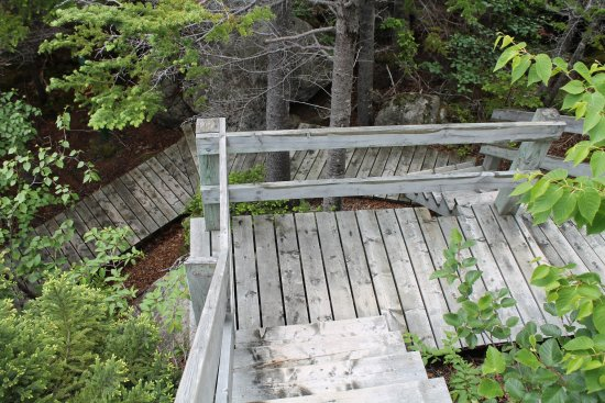 York Harbour, Canada : More stairs up