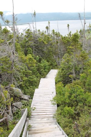 York Harbour, Canada : Stairs up