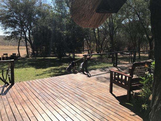 Hwange National Park, Zimbabwe: photo7.jpg