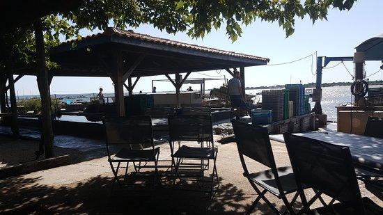 Photo de la cabane de l 39 aiguillon arcachon tripadvisor - La cabane de l aiguillon ...
